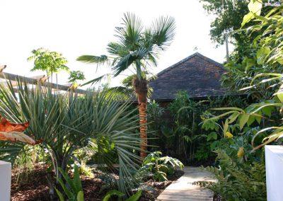 Cranleigh garden designer