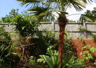 garden-design-cranleigh-4